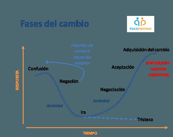 fases del cambio en la neurociencia empresarial