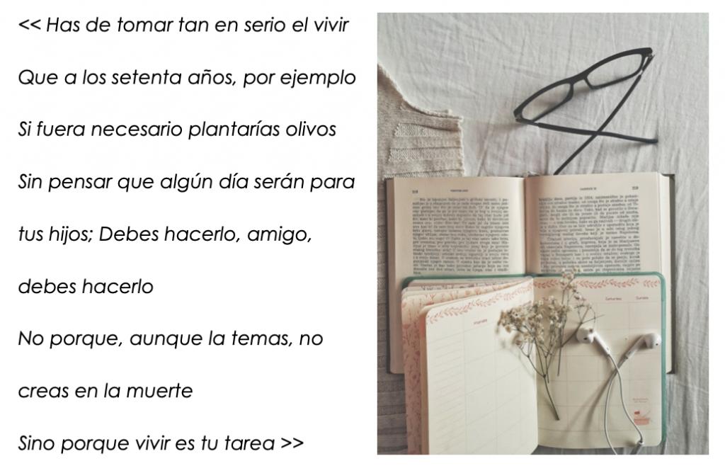 versos del poeta turco Nazim Hikmet